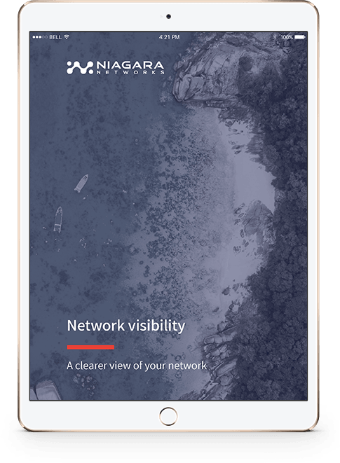 Network Visibility - A Clear View of Your Network