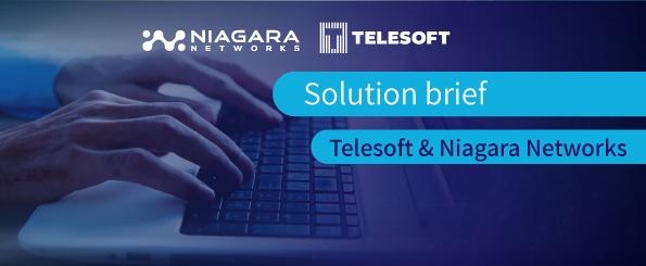 Solution-brife-Telesoft-and-Niagara-Networks2